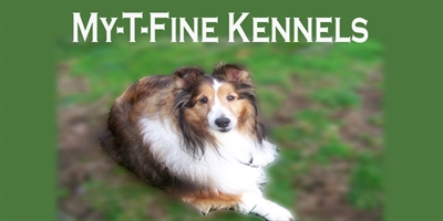 My-T-Fine Kennels